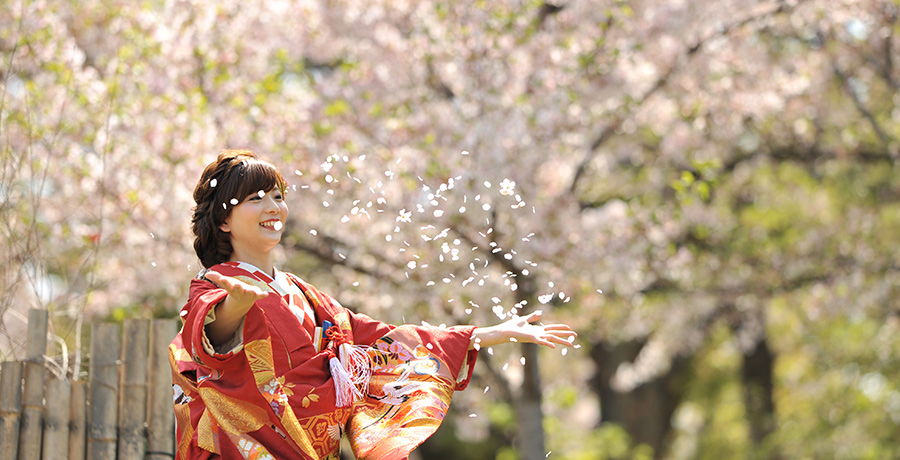 大阪城公園内で桜と一緒の新婦さまのお写真